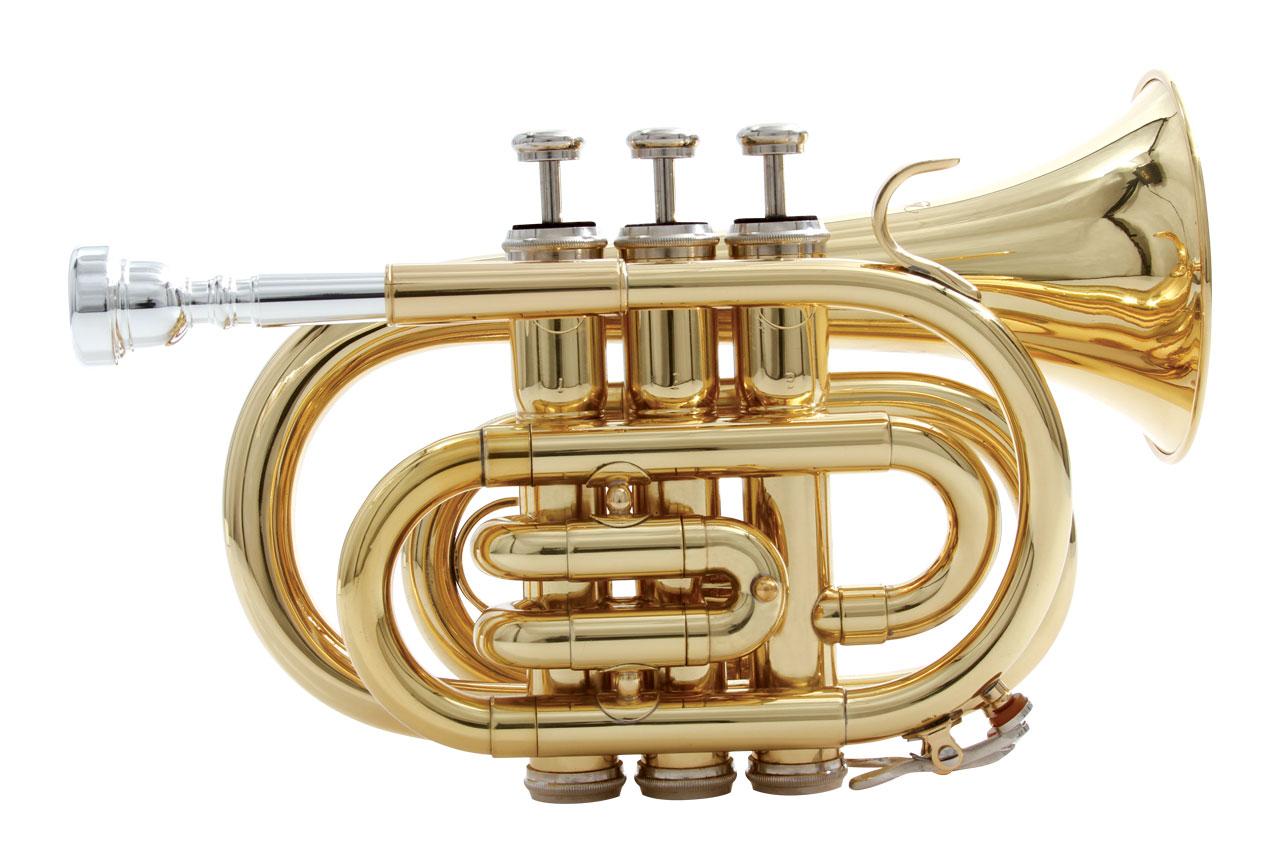 waldman_sopro_trompetepocket_wptgd_front1